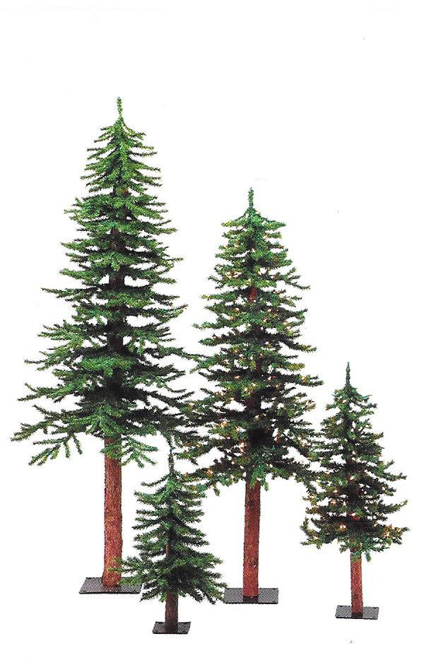 Alpine Trees