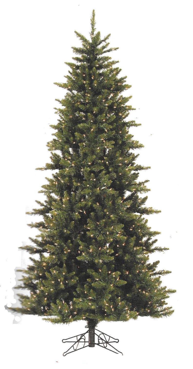 Camdon Fir Series - full tree