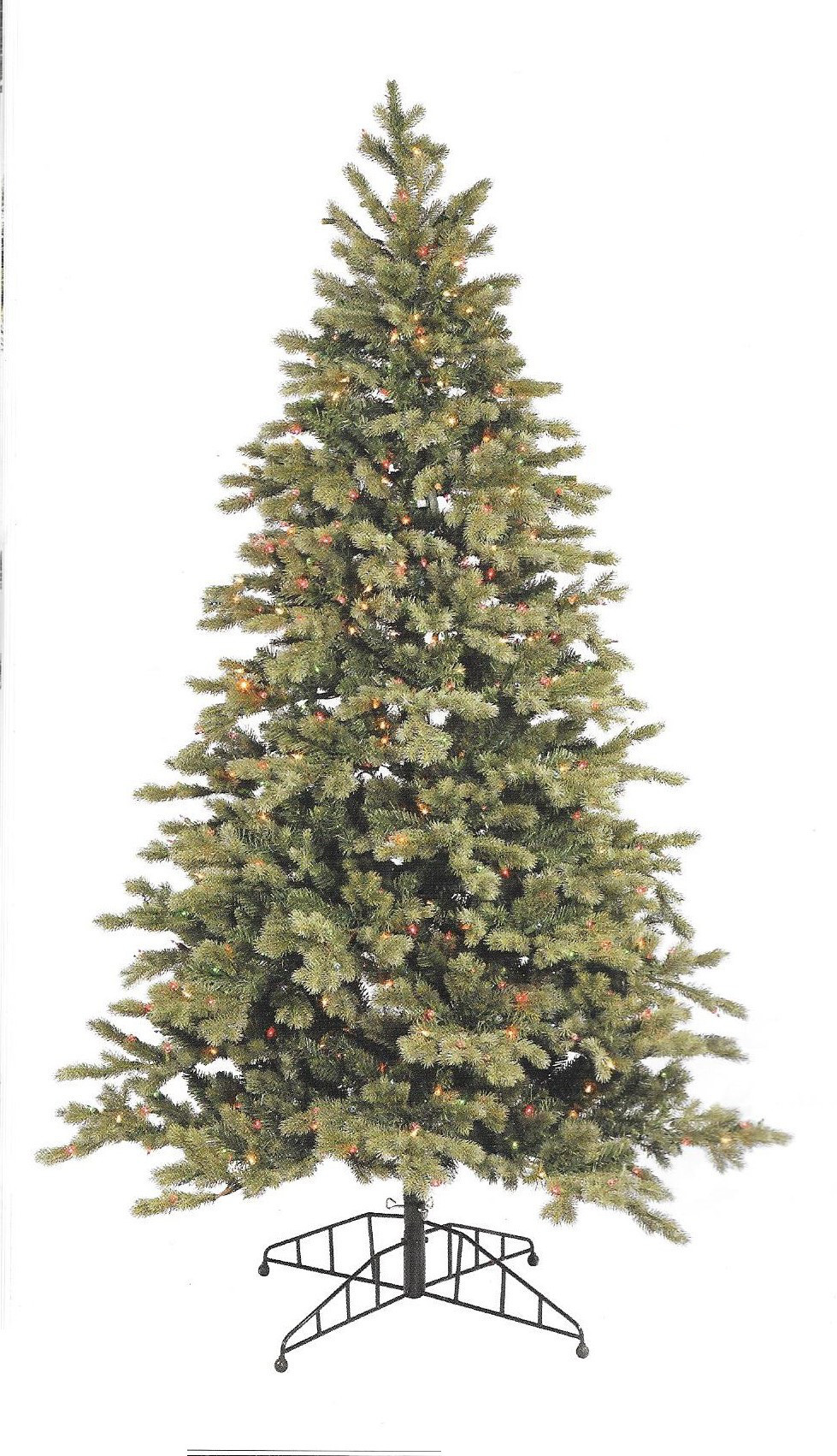 Blue Balsam Fir
