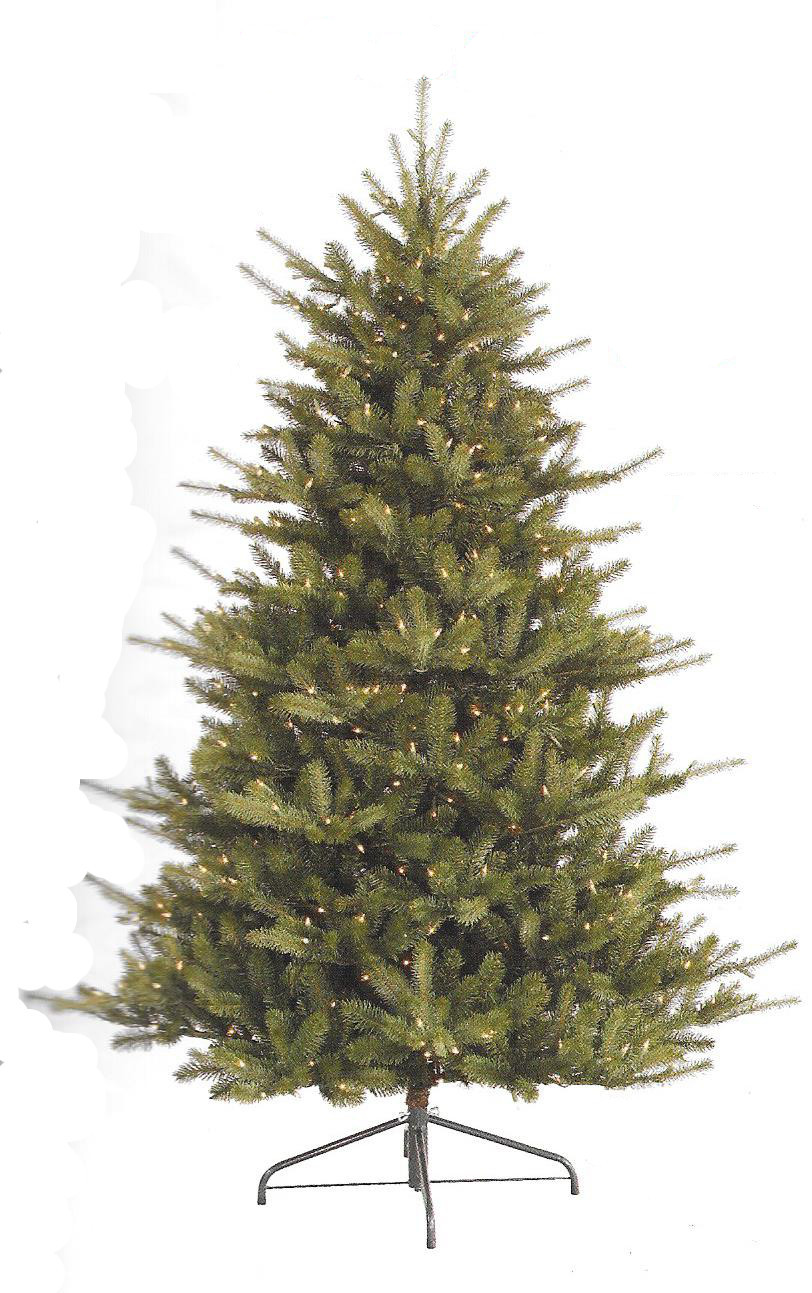 Colorado Spruce - Full