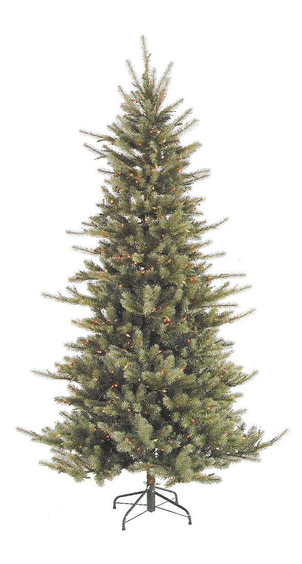 Colorado Spruce - Slim