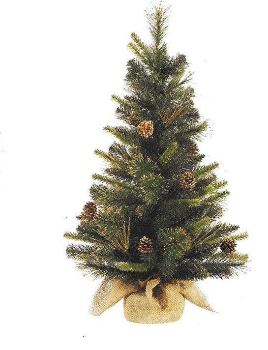 (Golden) Gold Glitter Tip Pine - 36 x18