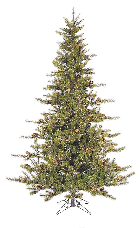 Timbercrest Spruce