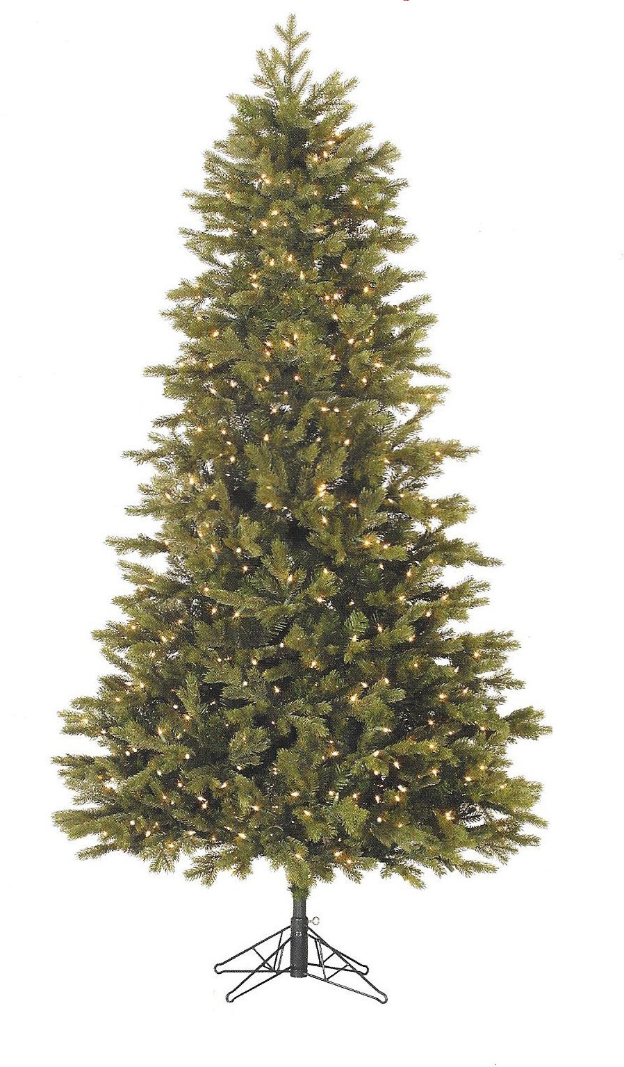 Slim Balsam Fir