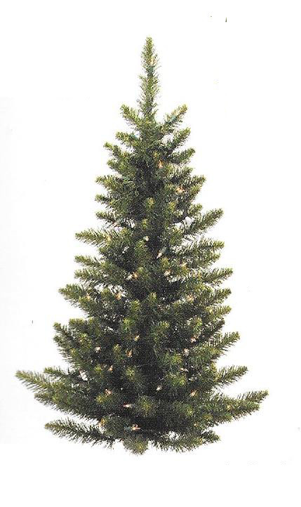 Camdon Fir Series - (small) wall tree