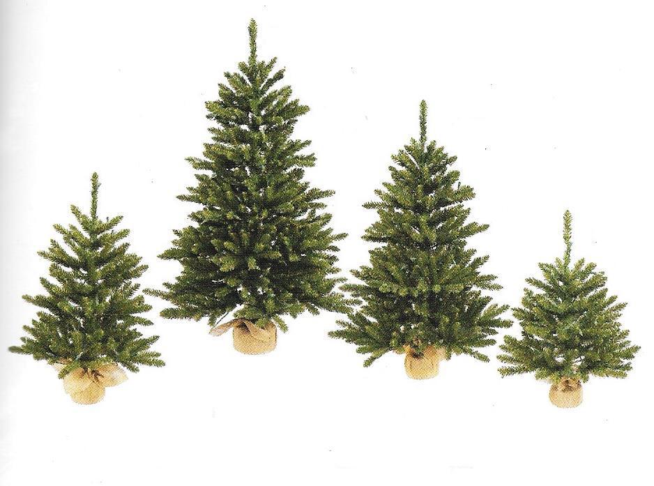 Anoka Pine