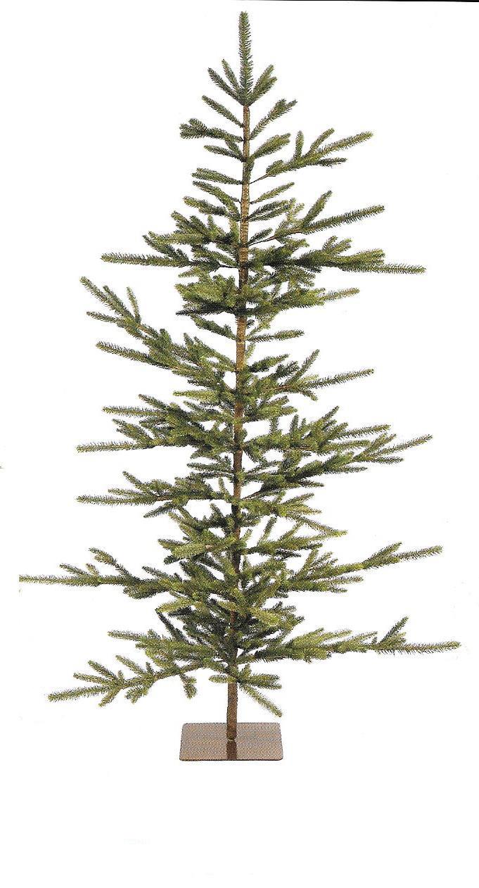 Big Fork Pine