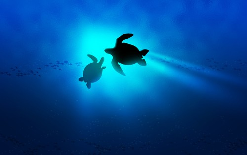 Sea Turtle Into the Deep